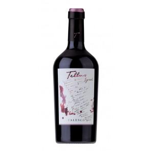 Falesco TELLUS Syrah Lazio IGP raudonas vynas