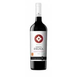 Vynas Torres Santa Digna Cabernet Sauvignon