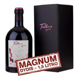 Didelis vyno butelis prabangioje dėžutėje