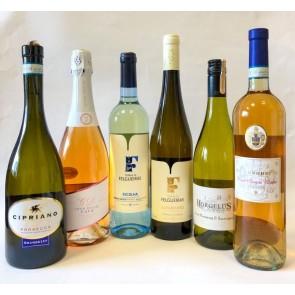 Vasaros rinkinio vynai