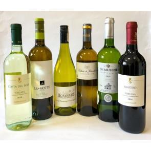 Vasaros rinikinio vynai